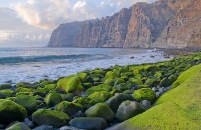 Pažintinė kelionė: žygiai Tenerifėje 10