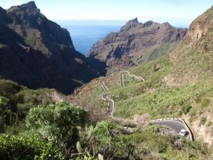 Pažintinė kelionė: žygiai Tenerifėje 2