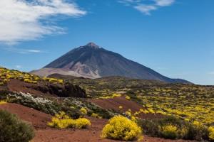 Pažintinė kelionė: žygiai Tenerifėje 8