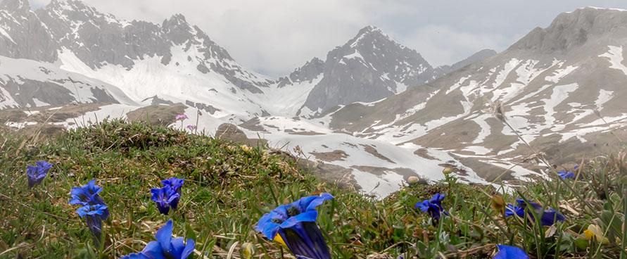 Pažintinė kelionė į Austriją. Austrijos Alpės
