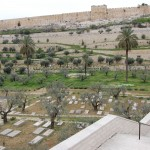 Izraelis 10