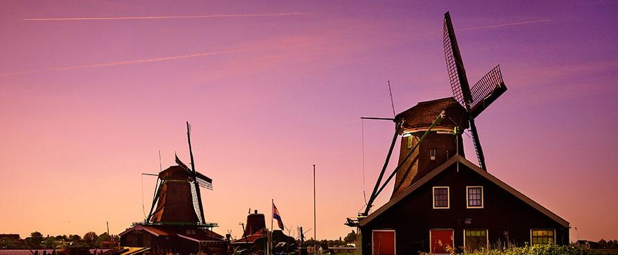 Gėlių žydėjimo šventė Olandijoje - pažintinė kelionė į Olandiją