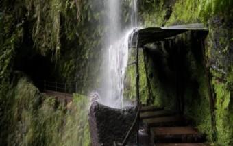 Pažintinė - poilsinė kelionė į Portugaliją. Amžinojo pavasario ir gėlių sala – Madeira! 3