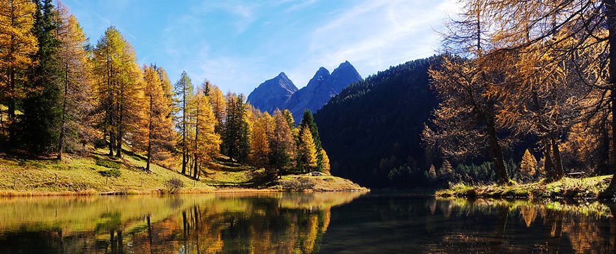 Pažintinė kelionė. Šveicarijos ir Austrijos gamta su poilsiu kalnuose